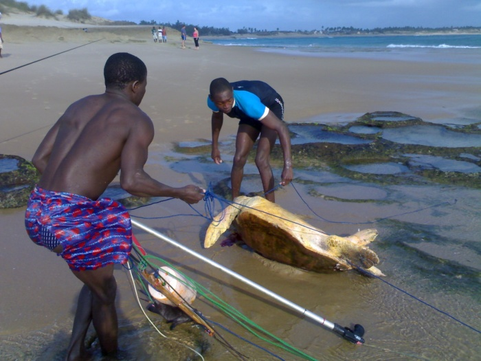 Spear fishers poaching