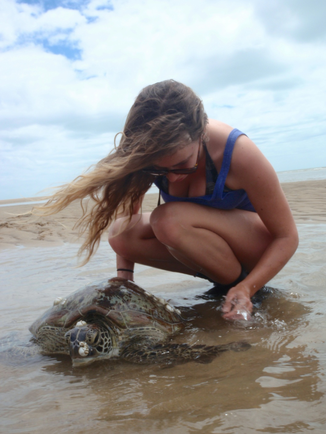 Turtle catching at Toolakea Beach