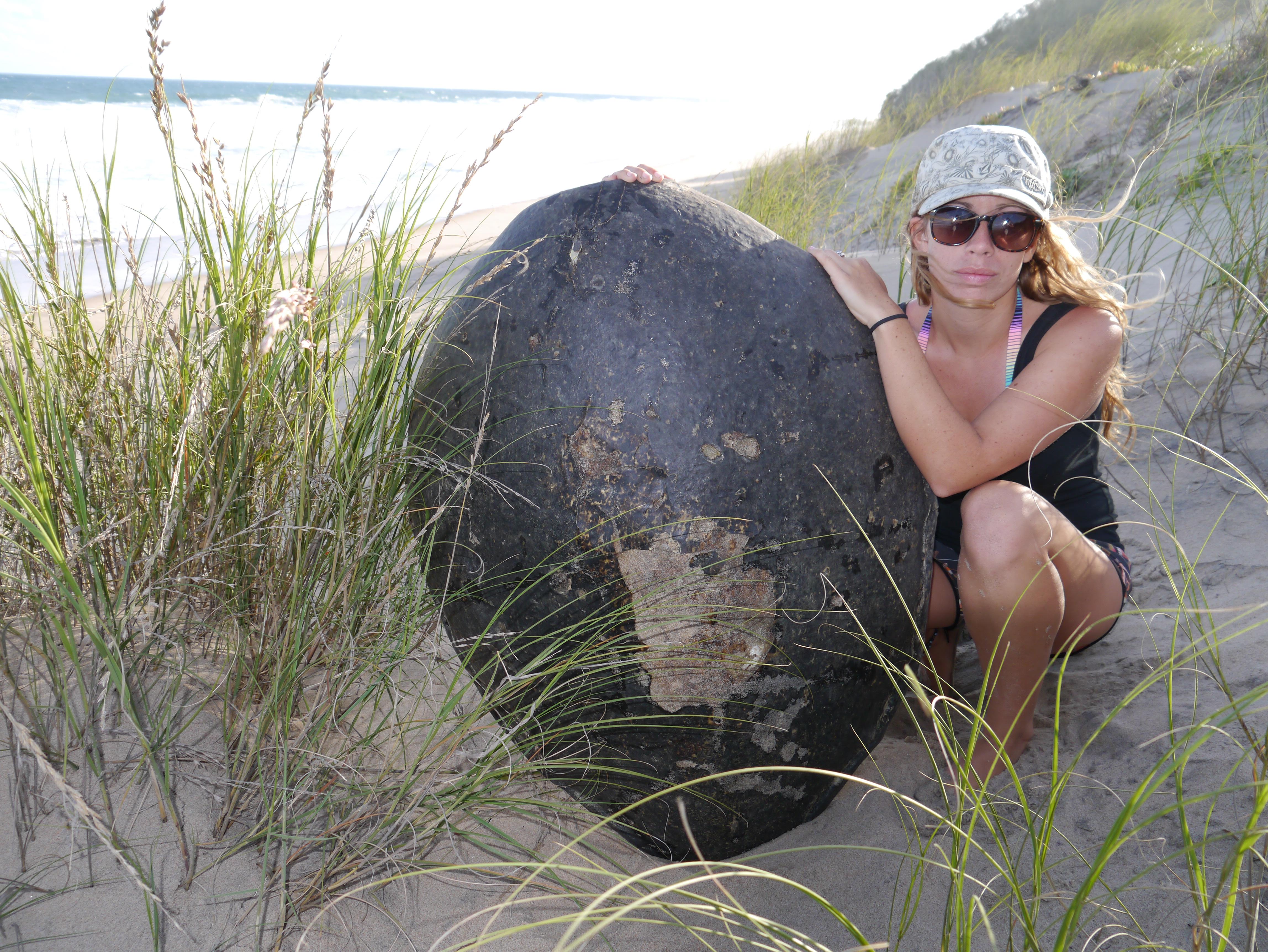 an exploratory turtle mission to zavora u2013 mozturtles