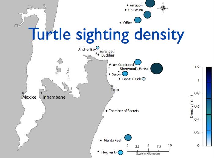 turtle density map