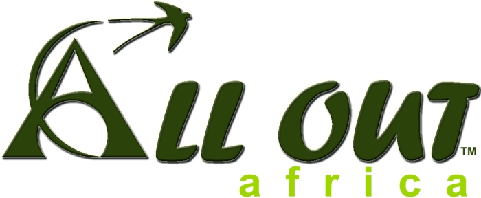All Out Logo large