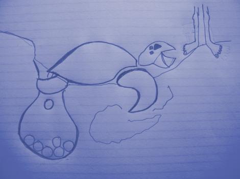 nesting turtle- fiesty